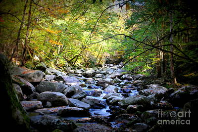 Photograph - Stream In The Smokies by Cynthia Mask