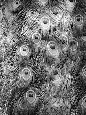 Photograph - Stream Of Eyes - Black And White by Diane Alexander