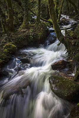 All You Need Is Love - Stream on Eume River Galicia Spain by Pablo Avanzini