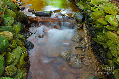 Photograph - Streaming Green by Nina Silver