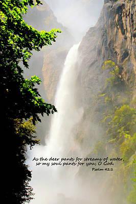 Photograph - Streams Of Water I I by Caroline Stella
