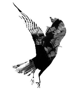 Street Crow Art Print