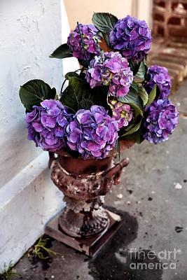 Photograph - Street Flowers by John Rizzuto