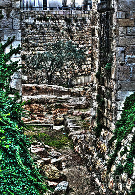 Art Print featuring the photograph Street In Jerusalem by Doc Braham