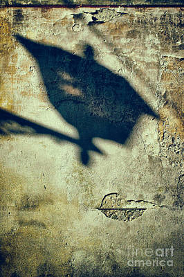 Photograph - Street Lamp Shadow by Silvia Ganora