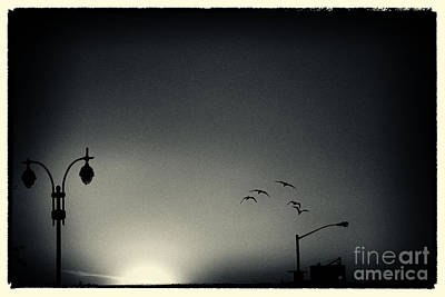 Filmnoir Photograph - Street Lights Battery Park New York City by Sabine Jacobs