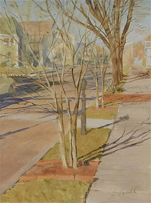 Street Trees With Winter Shadows Art Print
