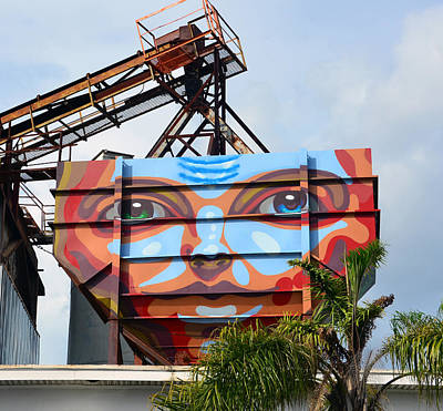 Photograph - Street Art Face 2 by David Lee Thompson