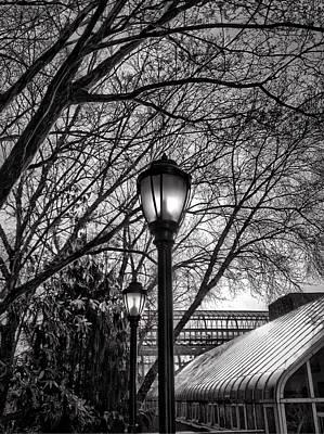 Streetlamp Brooklyn Print by H James Hoff