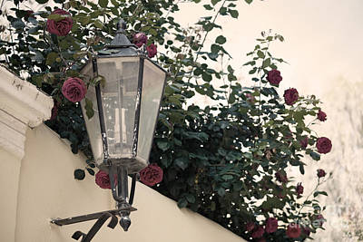 Streetlight Surrounded By Roses Art Print by Aiolos Greek Collections