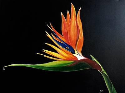Strelitzia Painting - Strelitzia - Bird Of Paradise . by Aarti Bartake