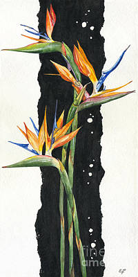 Lush Drawing - Strelitzia - Bird Of Paradise 11 by Elena Yakubovich