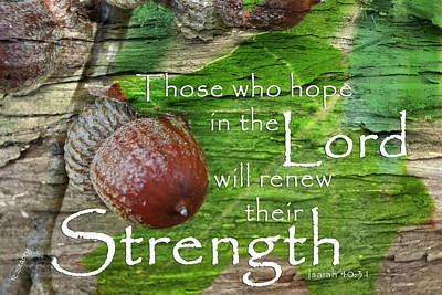 Photograph - Strength In The Lord by Robyn Stacey