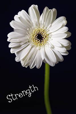 Strength Art Print by Kim Andelkovic
