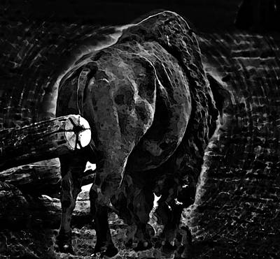 Photograph - Strength Of One by Miroslava Jurcik