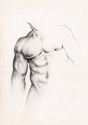 Homoerotic Drawing - Strength by Rudy Nagel