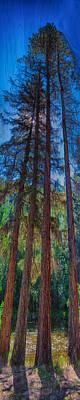 Painting - Stretching Secrets by Omaste Witkowski