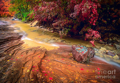 Striated Creek Art Print by Inge Johnsson