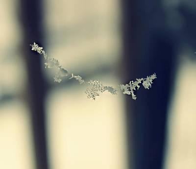 String Of Snowflakes Art Print
