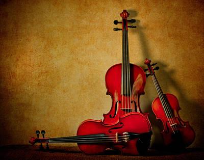 Photograph - String Trio by David and Carol Kelly