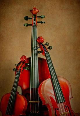 Photograph - Stringed Trio by David and Carol Kelly