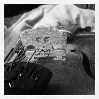 Music Photograph - Strings by Alyssa Adams