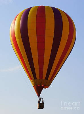 Photograph - Striped Balloon by Rachel Munoz Striggow