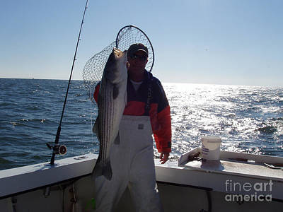 Photograph - Striper Catch Of The Day by John Telfer