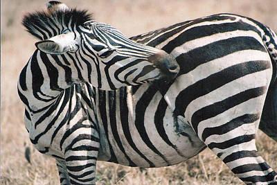 Stripes Dont Change Original