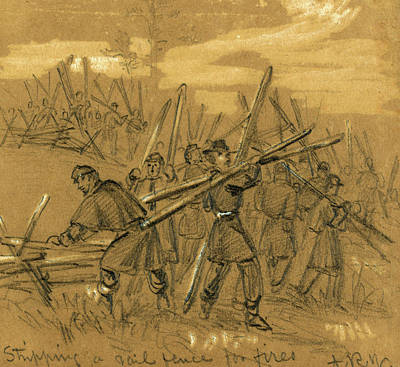 Fence Drawing - Stripping A Rail Fence For Fires, Between 1860 And 1865 by Quint Lox
