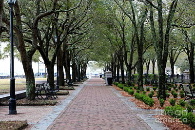 Photograph - Stroll In Charleston Park by Carol Groenen