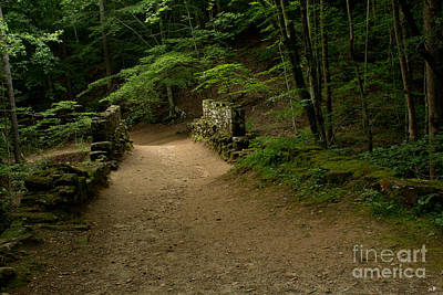 Photograph - Stroll In The Evening Across Poinsett Bridge by Sandra Clark
