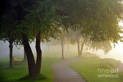 Trees Photograph - Stroll In The Fog by Terri Gostola