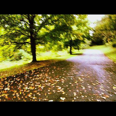 Photograph - Stroll On An Autumn Lane by Angela Rath