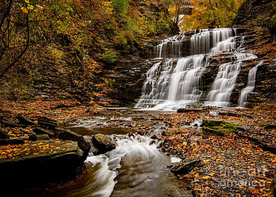 Photograph - Stroll Through Cascadilla Gorge by Brad Marzolf Photography