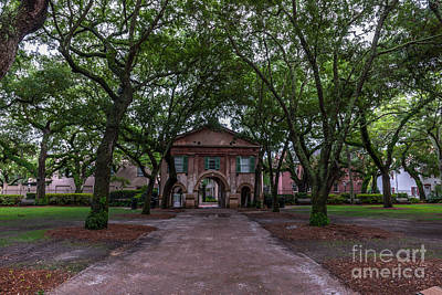 Photograph - Stroll Through The Campus by Dale Powell