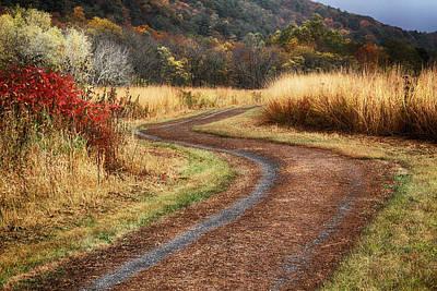 Photograph - Strolling Mcdade by Dawn J Benko