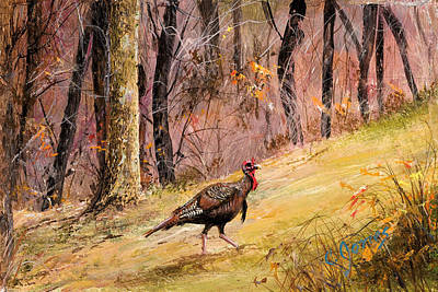 Wall Art - Painting - Strutting Turkey by C Keith Jones