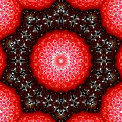 Strawberries And Blackberries Art Print