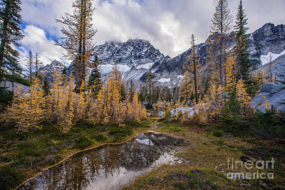 Photograph - Stuart Range And Fall Colors by Mike Reid
