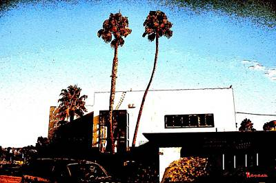 Photograph - Stucco Palms  by Sadie Reneau