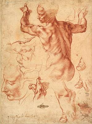 Studies For The Libyan Sibyl Art Print by Michelangelo Buonarroti