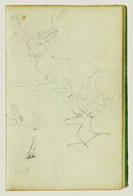 Studies Of A Seated Stag, A Fawn, A Goat Head Théodore Art Print by Litz Collection