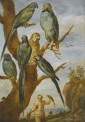 Flemish School Painting - Studies Of Birds by Celestial Images