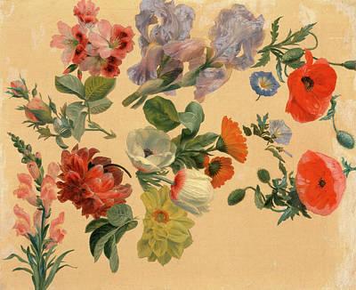 Studies Of Summer Flowers, Jacques-laurent Agasse Art Print by Litz Collection