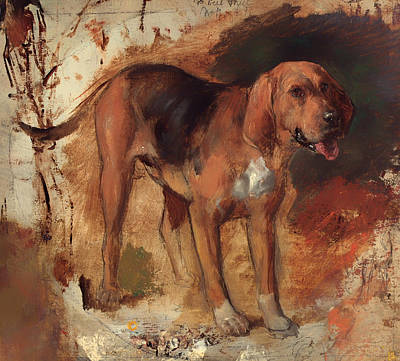 Bloodhound Painting - Study Of A Bloodhound by Mountain Dreams