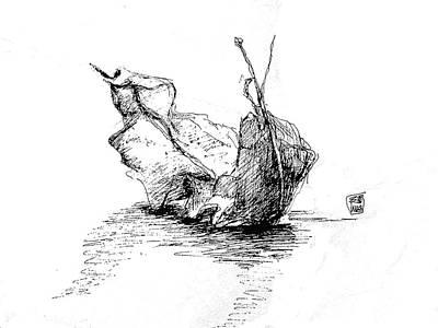Drawing - Study Of A Leaf by Seemab Zaheera