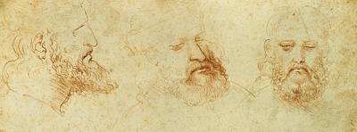 Contemplative Drawing - Study Of A Male Head by Leonardo Da Vinci