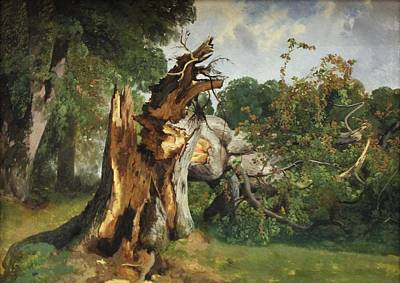 Fell Digital Art - Study Of A Tree Trunk by Alexandre Calame