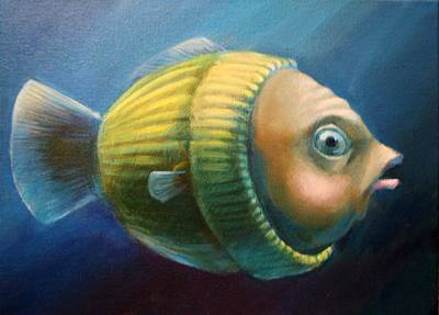 Study Of A Worried Sweater Fish Lateral View Art Print